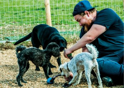 Shnoodles Doggy Daycare & Wellbeing Gallery 5